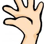 ダウン症のエコー写真の特徴:手