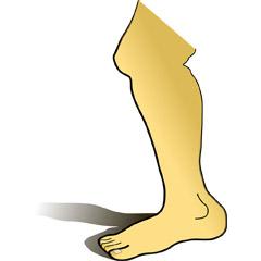 ダウン症 赤ちゃん 足