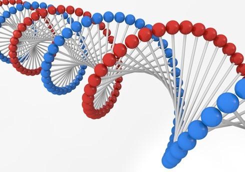 ダウン症 原因 遺伝