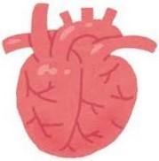 ダウン症 エコー 心臓